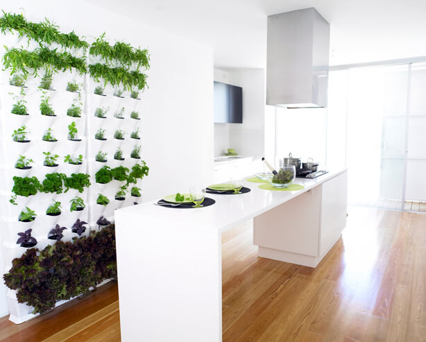 wall herb garden kitchen