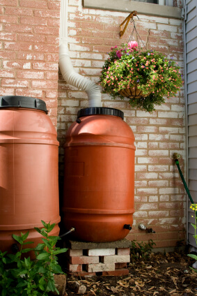 Water Harvesting Rainbarrels