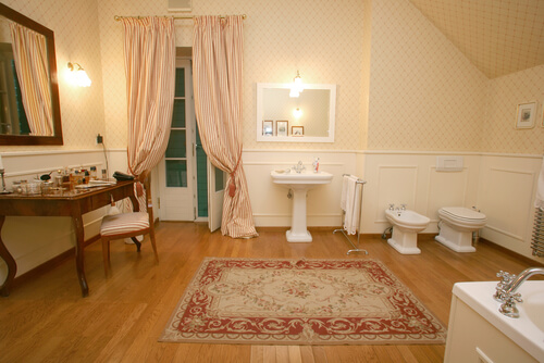 bathroom that looks like a living room