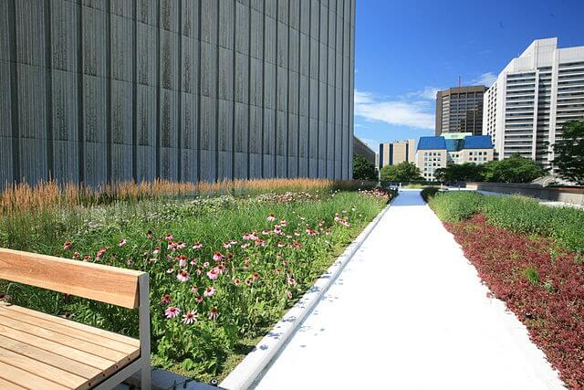 640px-Toronto_City_Hall_Podium_green_roof_by_LiveRoof,_July_2010