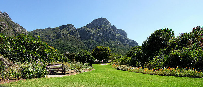 800px-Kirstenbosch_-_View_from_the_Botanical_Gardens