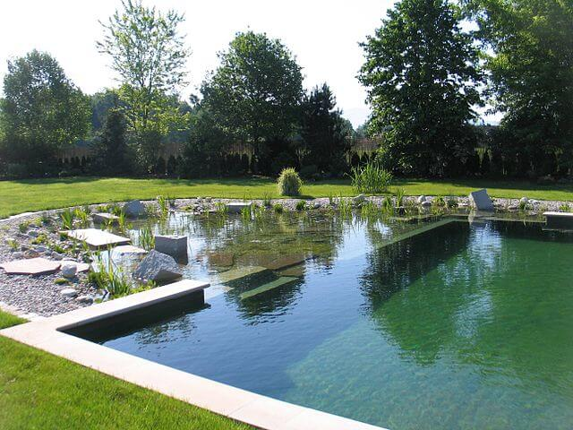 natural swimming pool with oxygenating plants
