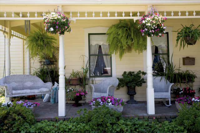 porch plants and furniture