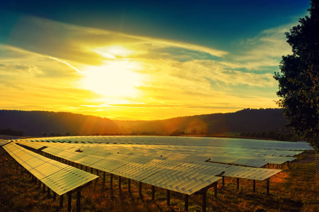 solar farm sunset
